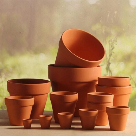 20pcs Red Pottery Flower Pot Terracotta Plant Pot With Hole Pottery Clay Planters for Cacti and Succulent Plants (3 x 3cm)