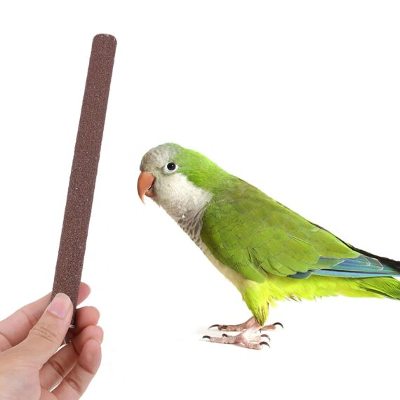 5pcs Bird Parrot Perch Stand Holder Color Emery Toys Grinding Claw Pet Cage Platform Accessories Chew Toy Bird Supplies